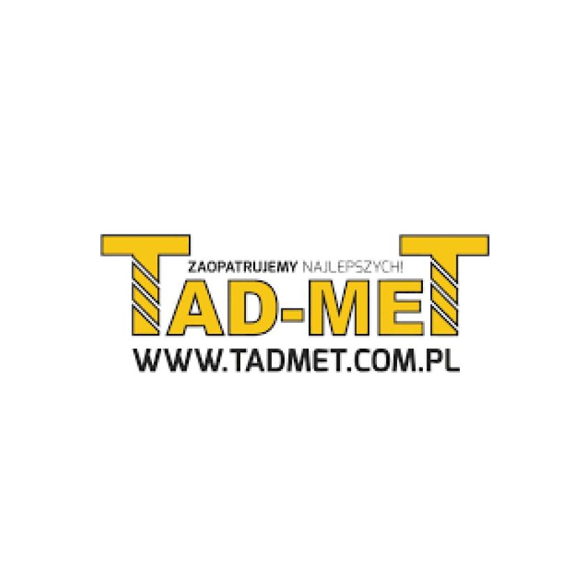 Logo TadmeT